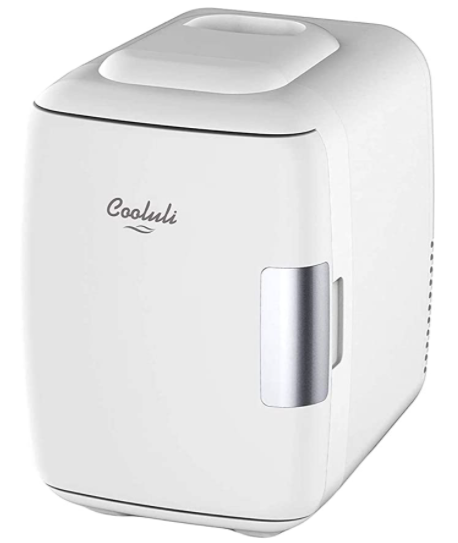 Best Portable Mini Refrigerator Cooluli Electric Cooler and Warmer