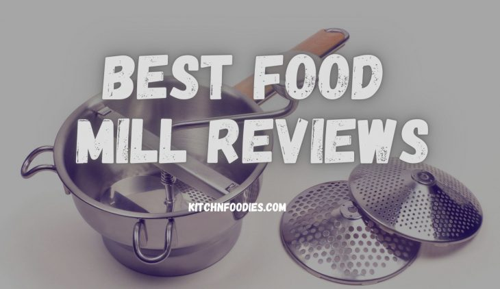 Best food mill reviews