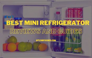 best mini refrigerator